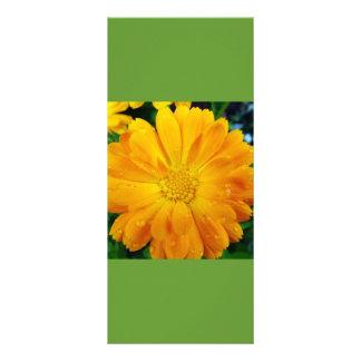 guarde la calma y siga leyendo, señal amarilla de tarjeta publicitaria personalizada