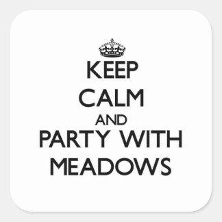 Guarde la calma y vaya de fiesta con los prados colcomanias cuadradases