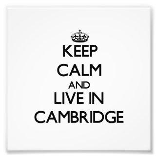 Guarde la calma y viva en Cambridge Cojinete