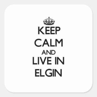 Guarde la calma y viva en Elgin Pegatina Cuadrada