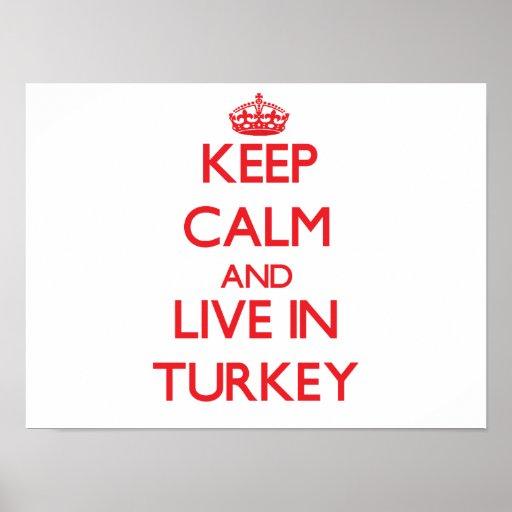 Guarde la calma y viva en Turquía Póster