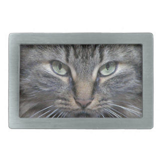 Guarded Maine Coon Kitty Cat Belt Buckle