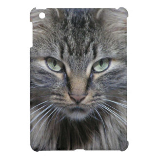 Guarded Maine Coon Kitty Cat Cover For The iPad Mini
