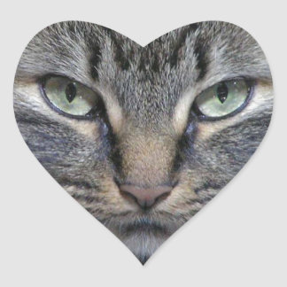 Guarded Maine Coon Kitty Cat Heart Sticker