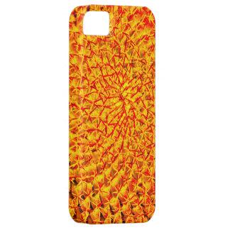 ¡Guárdese del cactus! iPhone 5 Funda