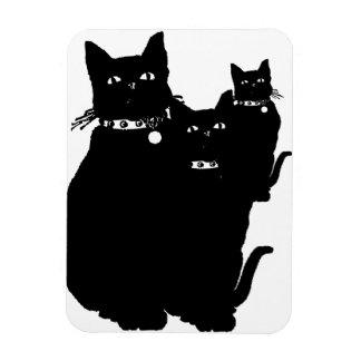 Guárdese del gato negro rectangle magnet