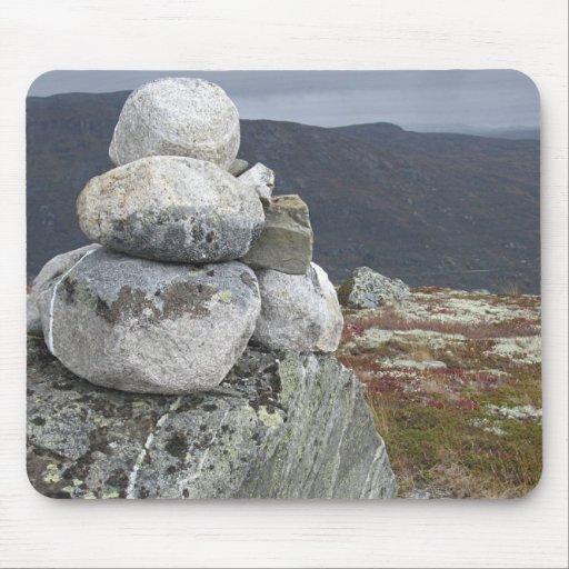 Guardia de piedra Mousepad