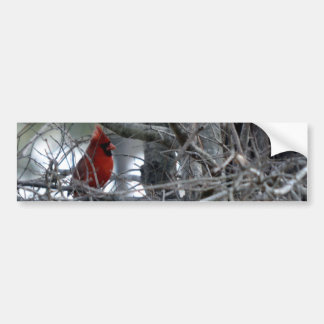 Guardia de reloj cardinal masculino pegatina para auto