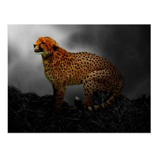 Guardia del alcohol del guepardo postal
