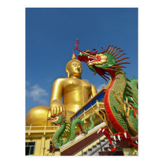 guardia del dragón tarjetas postales