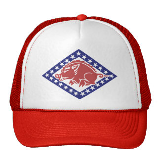 Guardia Nacional de Arkansas - gorra