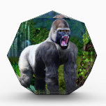 """Guardian of the Rain Forest Acrylic Award<br><div class=""""desc"""">The jungle trembles at the roaring sound of the Silverback Gorilla posed on the ground. Guardian of the rainforest is his quest and uses this hour to display his power.</div>"""