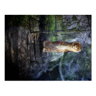 Guardian of the Woodland Postcards