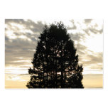 Guardian Tree Business Card