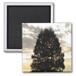 Guardian Tree Magnet