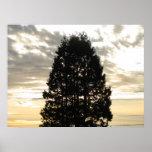 Guardian Tree Print
