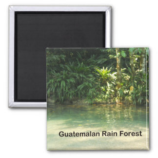 Guatemalan Rain Forest Magnet