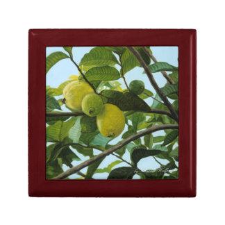 Guava Gift Box