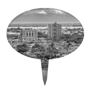 Guayaquil Aerial View from Window Plane Cake Topper
