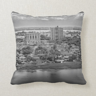 Guayaquil Aerial View from Window Plane Throw Pillow