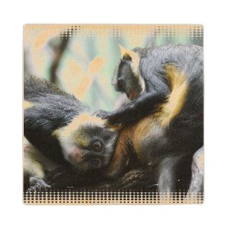 Guenon del lobo posavasos de madera