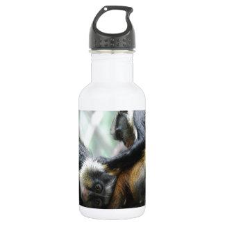 Guenon Monkeys 18oz Water Bottle