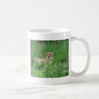 Guepardo 2 tazas de café