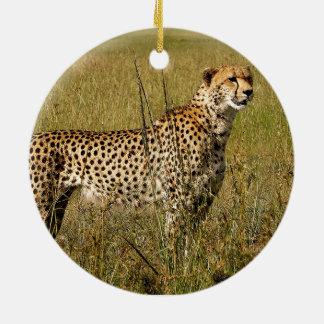 Guepardo africano salvaje en hierbas de la sabana ornamento para reyes magos