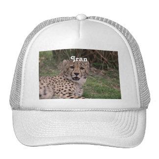 Guepardo asiático gorras