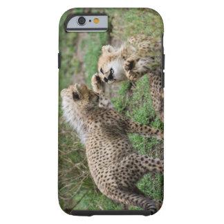 Guepardo Cubs que juega el caso del iPhone 6 Funda Para iPhone 6 Tough