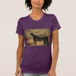 Guepardo de Samburu Camiseta