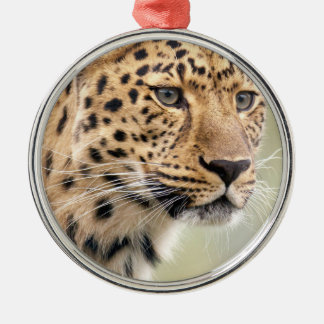 guepardo adorno redondo plateado