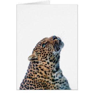 Guepardo del gato grande en el fondo blanco tarjeta de felicitación