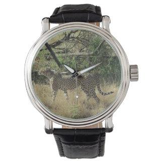 Guepardo en Samburu Reloj De Mano