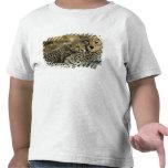 Guepardo, jubatus del Acinonyx, con el cachorro en Camiseta