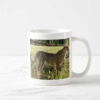 Guepardo orgulloso taza