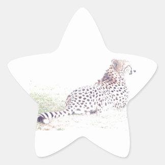 Guepardo Pegatina En Forma De Estrella