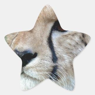 Guepardo salvaje pegatinas forma de estrella personalizadas