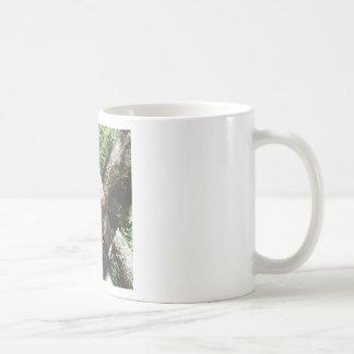 Guepardo Tazas De Café