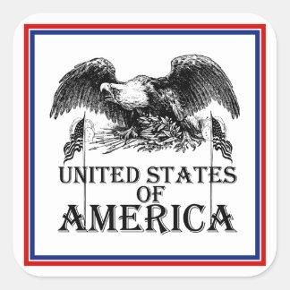 Guerra Eagle del vintage Calcomanías Cuadradases
