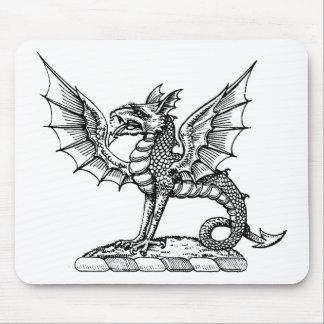 Guerrero 9 del dragón tapete de ratones