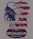 guerrero indio de los E.E.U.U. por los bros de rog Camiseta