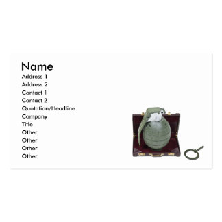 GuerrillaMarketing102410, Name, Address 1, Addr... Double-Sided Standard Business Cards (Pack Of 100)
