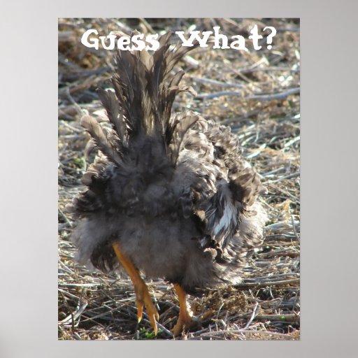 Guess What?  Chicken Butt Poster