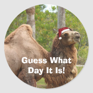 Guess What Day Christmas Camel Envelope Seals /