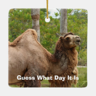 Guess What Day It Is Camel Funny Quote Ceramic Ornament