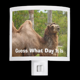 Guess What Day It Is Camel Funny Quote Custom Night Light