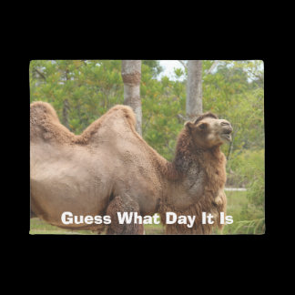 Guess What Day It Is Camel Funny Quote Doormat