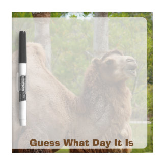 Guess What Day It Is Camel Funny Quote Dry-Erase Board