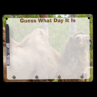 Guess What Day It Is Camel Funny Quote Dry Erase Board With Keychain Holder